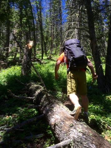 HikingBigHorns2
